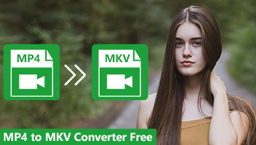 Convertisseur MP4 en MKV gratuit